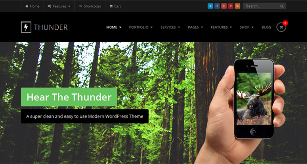 Thunder WordPress Theme