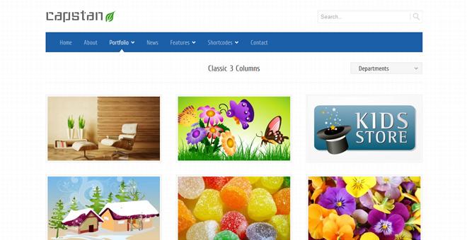 Capstan Business Premium - WordPress Theme